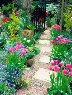 Relaxed plantings are typical of a cottage garden design. Pink and red flowers line a stone walkway surrounded by pebbles and a black picket fence in this garden for a classic cottage design.