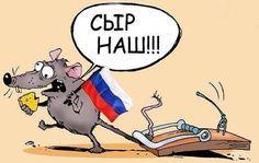 Сыр уже съеден. Крымская мышеловка для Путина — долгоиграющая | Новости Украины, мира, АТО