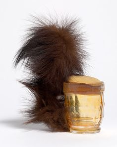 Meret Oppenheim - Squirrel  (1969) Fur, glass, plastic foam http://nga.gov.au/softsculpture/essay.cfm