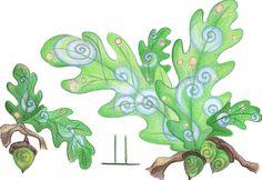 Oak by Spiralpathdesigns