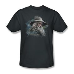 The Hobbit Lord Of The Rings Gandalf The Grey Movie Adult T-Shirt Tee - http://bandshirts.org/product/the-hobbit-lord-of-the-rings-gandalf-the-grey-movie-adult-t-shirt-tee/