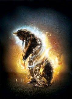Native American bear spirit-transformation-shape shifting