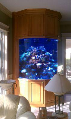 Custom Fish Tank Cabinetry