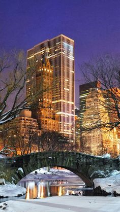 New York City at Night From Central Park in the snow. | A1 Pictures