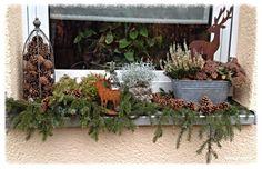 Tonkabohne Deko Und Seltsame Gerüche Weihnachtsdeko Fensterbank Dekorieren Adventszeit Weihnachtszeit