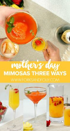 Three Amazing Mimosa