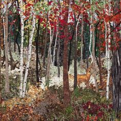Autumn Whitetail