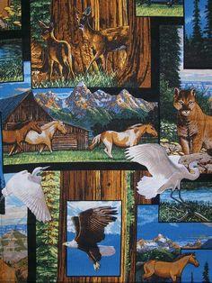 animal scrubs -- american wildlife