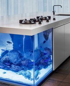 A kitchen very design aquarium - Une cuisine aquarium très design