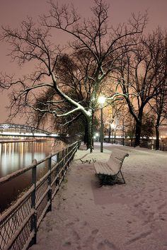 Paris ~ sous la neige