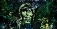 Juxtapoz Magazine - Portraits of Indigenous Peoples Projected onto the Rainforest