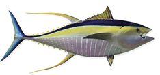Kaşif Akıllı Robot Balık
