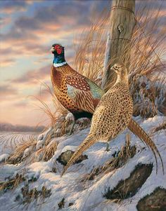 Twilight Escapade-Pheasants by Rosemary Millette