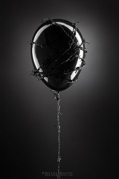 Fragile black and white photo balloon wrapped in barbed wire floats away