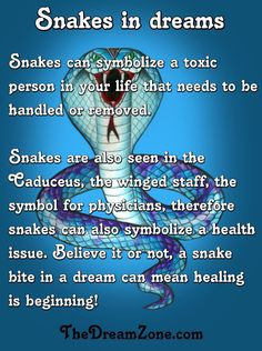 Snakes in your dreams