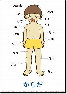 Body Parts in Japanese  言葉の絵カード「体(2)」 【A4】