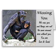 """Any Occasions_Customize Product Greeting Card Custom Greeting Card """"Get Well"""" with a mother Chimpanzee and her baby. art by Elenne Boothe Low Prices on all greeting cards. http://www.zazzle.com/any_occasions_customize_product_greeting_card-137992739927652258 #GreetingCards #Chimpanzees #WWW.Zazzle.Com/Elenne #Zazzle #Pinterest #LosAngelesZoo #MissingYou"""