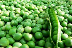 Super Sweet Green Arrow Peas seed~ Organically Grown .shelling peas