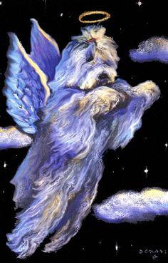 Old English Sheepdog Colors   Old English Sheepdog Angel Pastel