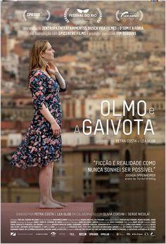 OLMO E A GAIVOTA