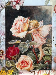 Alenquerensis: Cicely Mary Barker ( 1895 - 1973 )