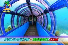 Pesona Undersea Aquarium di Pulau Putri Kepulauan Seribu.