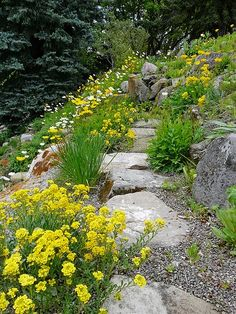 Slope garden and landscaping idea.