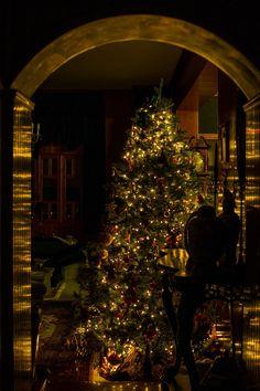 Christmas tree in Greece