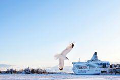 Luminen satama, Silja Symphony.