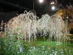 A Garden Fantasy - Burke Brothers Landscape Contractors - 2002 Philadelphia Flower Show Photo Gallery