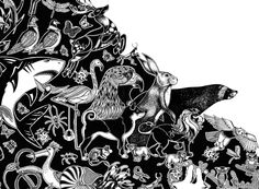 Wonderbeasts Kickstarter Johanna Basford
