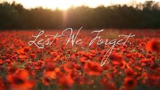 On the hour of the day of the month. We will remember you. Wishing You A Safe Remembrance Day From The Team At Sopron Auto Body - Remembrance Day Pictures, Remembrance Day Poppy, The 11th Hour, Battle Of The Somme, Anzac Day, Lest We Forget, We Remember, In Loving Memory, Before Us