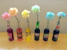 Changing the color of Carnations. A beautiful and fun experiment with fo. Changing the color of Carnations. A beautiful and fun experiment with food coloring. The ol -