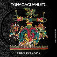 Aztec Symbols, Mayan Symbols, Viking Symbols, Viking Runes, Ancient Symbols, Egyptian Symbols, Aztec Religion, Mexican Artwork, Tatoo