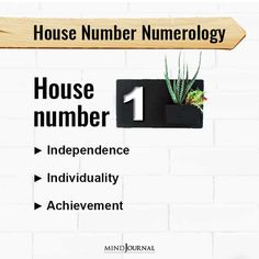 Address Numerology: What Does Your House Number Mean? Palmistry Reading, Venus In Virgo, Cv Words, Hand Reflexology, Types Of Hands, Palm Reading, Spirit Science, Right Brain, Numerology