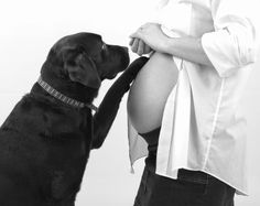 5 amazing things your dog can sense once you are pregnant