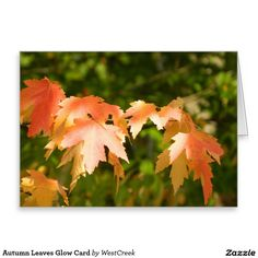 Autumn Leaves Glow Card