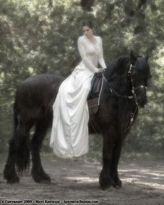 (Shadowflame) Isis and Osiris, David's two horses, are Friesians. This pic gives a really good idea of their size and strength.