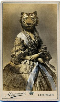 http://lespapierscolles.wordpress.com/2013/06/17/charlotte-cory/  Charlotte Cory #portrait #animal #montage #art #graphisme #illustration #collage