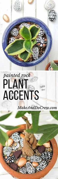 These DIY hand painted rocks are a simple and budget-friendly craft that add pizazz to potted plants and gardens. Find some stones, grab your paint and dream up some designs! Perfect grown up or kid craft project! | MakeAndDoCrew.com
