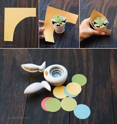 Best 12 Cómo hacer souvenirs con suculentas How to make souvenirs with succulents Succulent Wedding Favors, Succulent Gifts, Retreat Gifts, Sweet Table Wedding, Cactus Gifts, Diy And Crafts, Paper Crafts, Mini Cactus, Paper Cones