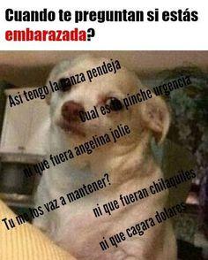 366 Best Memes De Gordos Images Humor Funny Spanish Humor