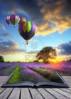 Hot air balloons over Summer lavender field landscape coming out of pages in magic book Stock Photo • photographer : Matthew Gibson (UK)