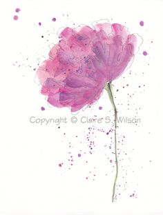watercolor peony | Peony Passion Original watercolor 8x10 SALE by claireswilson