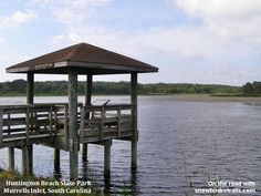 All types of wildlife at Huntington Beach State Park Rv Campgrounds, Outdoor Tables, Outdoor Decor, Huntington Beach, Myrtle, Beautiful Beaches, Great Places, State Parks, Gazebo