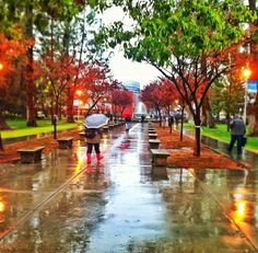 Photo by Saul Llanes, Fresno State Student