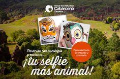 Cantur organiza los concursos escolares `Tu selfie más animal' y `Tu monólogo más animal' sobre Cabárceno - CANTUR – Sociedad Regional Cántabra de Promoción Turística - Cantabria