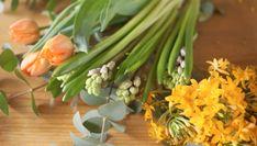 Spring Flowers, Celery, Vegetables, Plants, Food, Meal, Eten, Vegetable Recipes, Meals