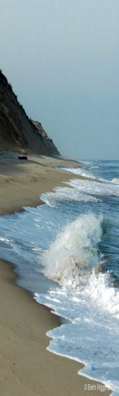 NATIONAL SEA SHORE COAST, CAPE COD, MASSACHUSETTS, USA