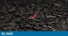 Con motivo del 75º aniversario de la liberación de Auschwitz, el autor de 'KL', una monumental historia de los 'lager' nazis, traza el retrato de la vida y la muerte en el campo más mortífero y simbólico del Holocausto Beef, Chocolate, Food, Portrait, Death, Country, Author, Historia, Life